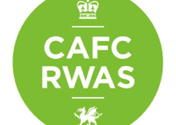 RWAS Spring Festival 2018