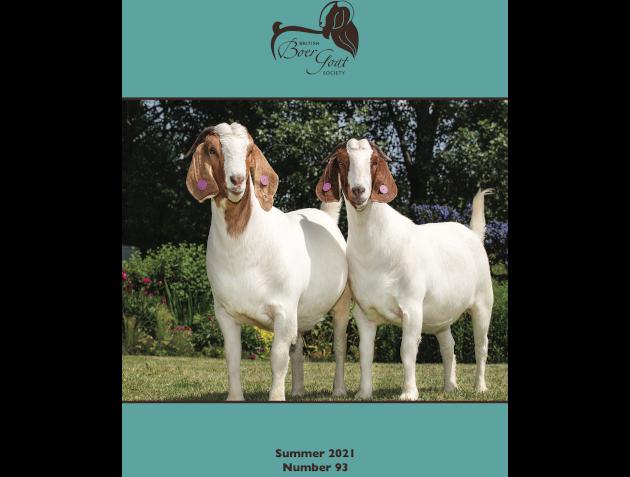 Magazine Vol 93 Summer 2021
