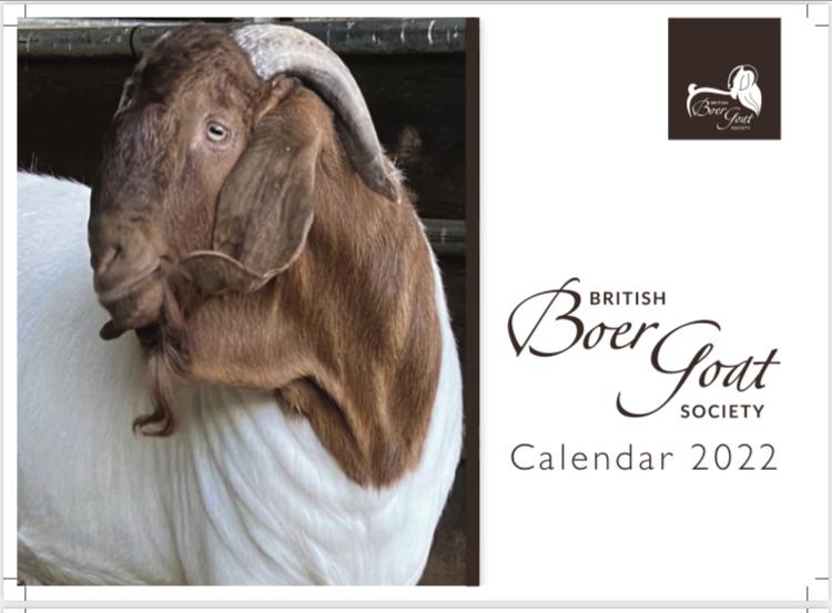 BBGS Calendar 2022